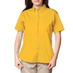 bg6213s_yellow_small.jpg