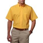bg7217s_yellow_small.jpg
